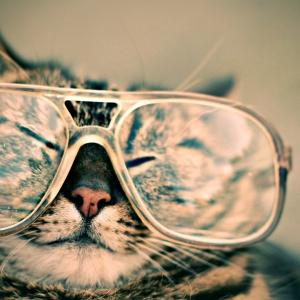 Fred wears his new spectacles